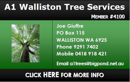 A1 Walliston