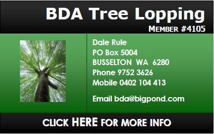 BDA Tree Lopping
