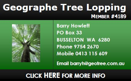 Geographe Tree Lopping