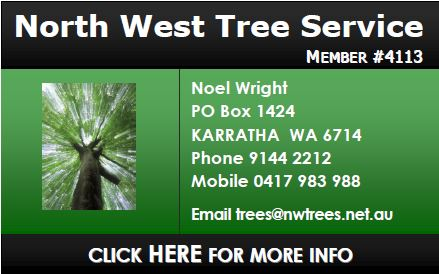 North West Tree Service