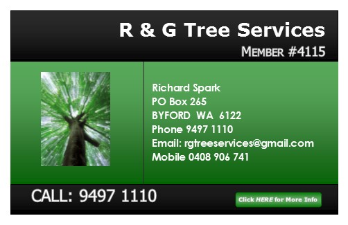 rg-tree-service