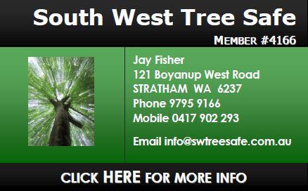 South West Tree Safe