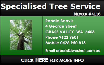 Specialised Tree Service