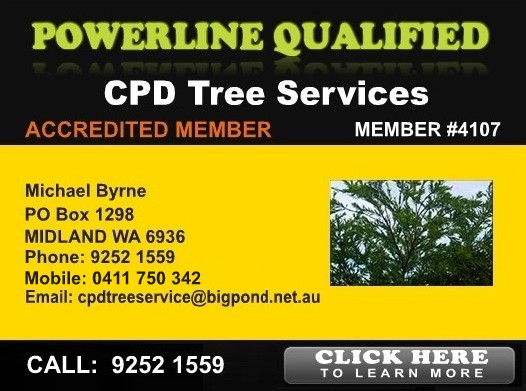CPD Tree Service