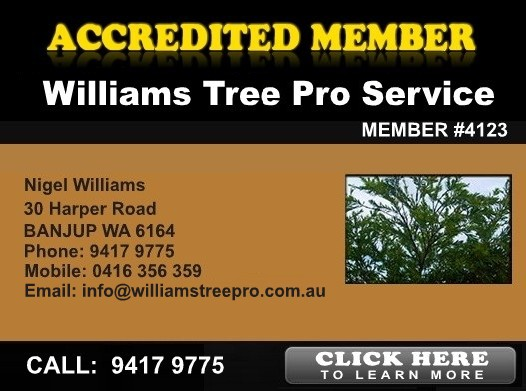 Williams Tree Pro Services